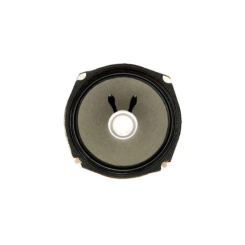 QS YD-120 Car Speaker