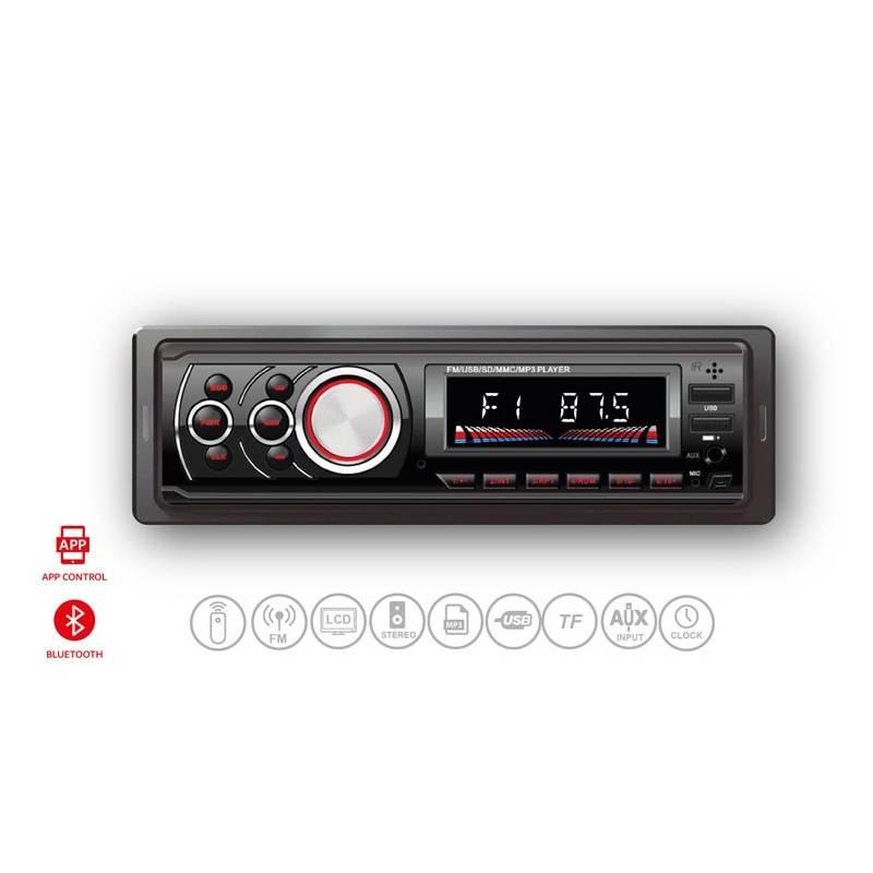 Panatech P-CP301Car Audio