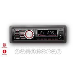 Panatech P-CP 302 Car Audio